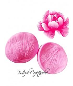 Veiner petale trandafir