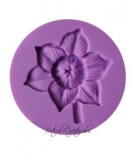 Mulaj floare narcisa